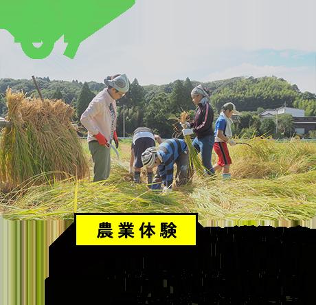 農業体験でご利用の方 土に触れ自然に触れることで、 豊かな感性が育まれます。